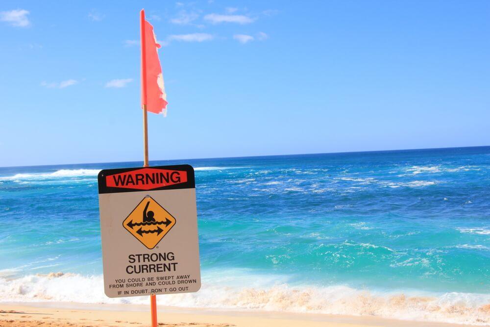 Menace at the Beach (No, Not Sharks)